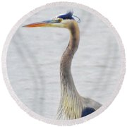Great Blue Heron Of Virginia Round Beach Towel
