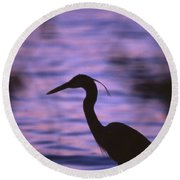 Great Blue Heron Photo Round Beach Towel