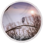 Great Blue Heron On A Dead Tree Branch At Sunset Round Beach Towel