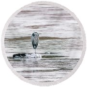 Great Blue Heron On A Frozen Lake Round Beach Towel