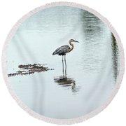 Great Blue Heron On Chesapeake Bay Pond Round Beach Towel