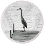 Great Blue Heron On Dock - Keuka Lake - Bw Round Beach Towel