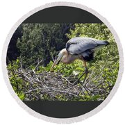 Great Blue Heron On Nest Round Beach Towel