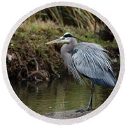 Round Beach Towel featuring the photograph Great Blue Heron On The Watch by George Randy Bass