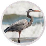 Great Blue Heron Profile Round Beach Towel