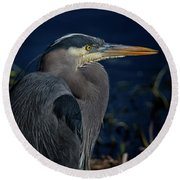 Round Beach Towel featuring the photograph Great Blue Heron by Randy Hall