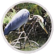 Great Blue Heron Ruffles Its Feathers Round Beach Towel