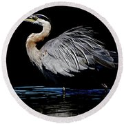 Great Blue Heron Show Off Round Beach Towel