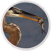 Great Blue Heron W/catfish Round Beach Towel