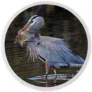Great Blue Heron With Tilapia Round Beach Towel