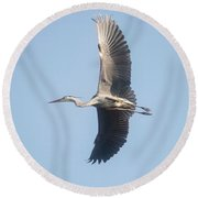 Round Beach Towel featuring the photograph Great Blue On Final by David Bearden