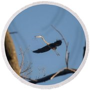 Round Beach Towel featuring the photograph Great Blues Nesting by David Bearden