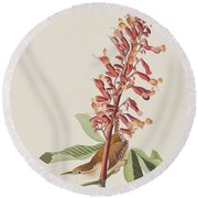 Great Carolina Wren Round Beach Towel