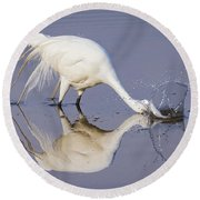 Great Egret Dipping For Food Round Beach Towel