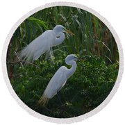 Great Egret Displays Windy Mating Plumage 2 Round Beach Towel