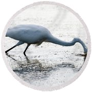 Great Egret Faceplant Round Beach Towel