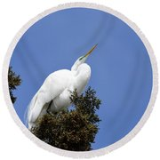 Great Egret Round Beach Towel by Gary Wightman