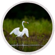 Great Egret, Great Fisherman Round Beach Towel