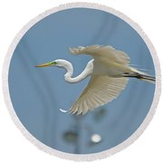 Great Egret In Flight And Flood Lighting Round Beach Towel