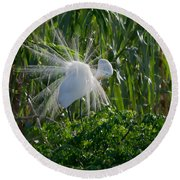 Great Egret In Flight With Windy Plumage Round Beach Towel