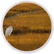 Great Egret In Morning Light Round Beach Towel
