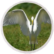 Great Egret In Unusual Portrait Round Beach Towel