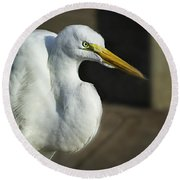 Great Egret Portrait Round Beach Towel