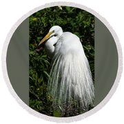 Round Beach Towel featuring the photograph Great Egret Portrait Two by Steven Sparks