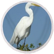 Great Egret Profile Round Beach Towel