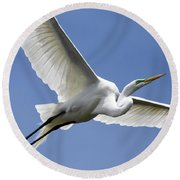 Great Egret Soaring Round Beach Towel by Gary Wightman