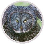 Great Gray Owl Flight Portrait Round Beach Towel
