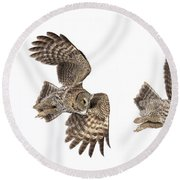 Round Beach Towel featuring the photograph Great Grey Owl Hunting by Mircea Costina Photography