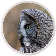 Great Grey's Profile A Closeup Round Beach Towel by Torbjorn Swenelius