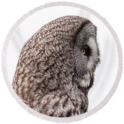 Great Grey's Profile On White Round Beach Towel