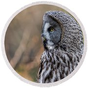 Great Grey's Profile Round Beach Towel by Torbjorn Swenelius