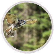 Great Horned Owl-2366 Round Beach Towel