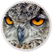 Great Horned Owl Closeup Round Beach Towel