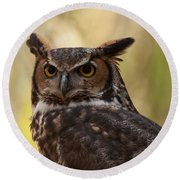 Round Beach Towel featuring the photograph Great Horned Owl In A Tree 1 by Chris Flees