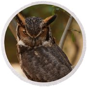 Round Beach Towel featuring the photograph Great Horned Owl In A Tree 2 by Chris Flees