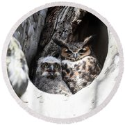 Great Horned Owl Nest Round Beach Towel by Gary Wightman