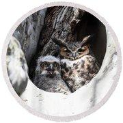Great Horned Owl Nest Round Beach Towel