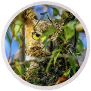Great Horned Owl Peeking At It's Prey Round Beach Towel