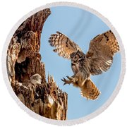 Great Horned Owl Returning To Her Nest Round Beach Towel