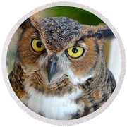 Great Horned Owl  Round Beach Towel by Richard Bryce and Family