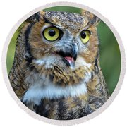 Great Horned Owl Smiling Round Beach Towel by Amy Porter