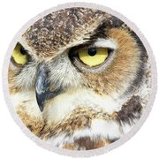 Great Horned Owl Up Close Round Beach Towel