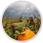 Great Pumpkin Off Center Round Beach Towel