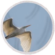Round Beach Towel featuring the photograph Great White Egret - 2 by David Bearden