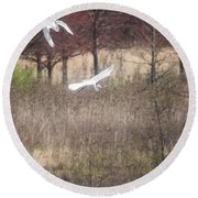 Round Beach Towel featuring the photograph Great White Egret - 3 by David Bearden
