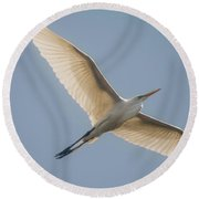 Round Beach Towel featuring the photograph Great White Egret by David Bearden